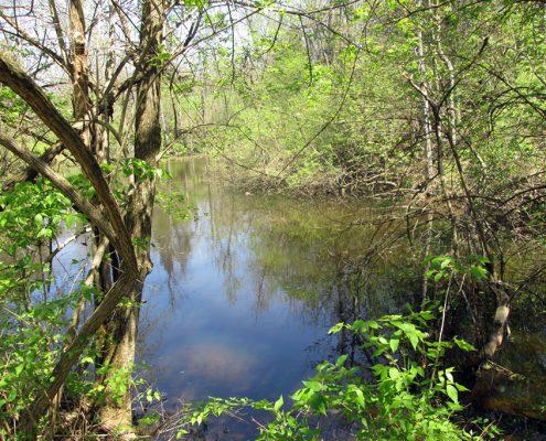 Johnson Hills Park pond