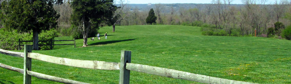 Two women walking their dogs on the rolling hills of Johnson Hills Park