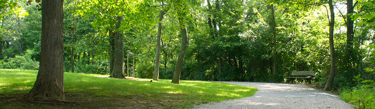 veterans park trail and bench