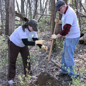 volunteers planting a tree sapling at Great American Cleanup