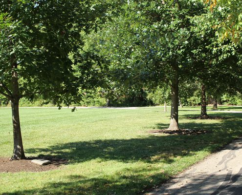 Last gifts: Adopt-a-Tree with engraved markers at Veterans Park