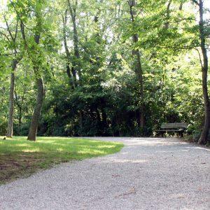 Veterans Park trail