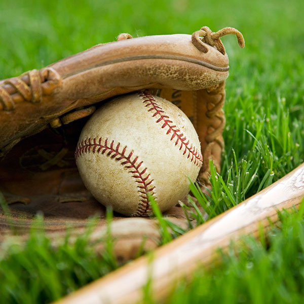 baseball glove with ball and bat on the grass