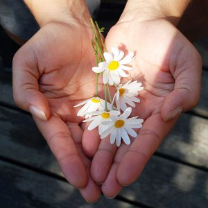 hands open with flowers to offer to someone