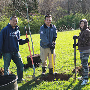 family of mom, dad and son volunteering to plant trees at johnson park