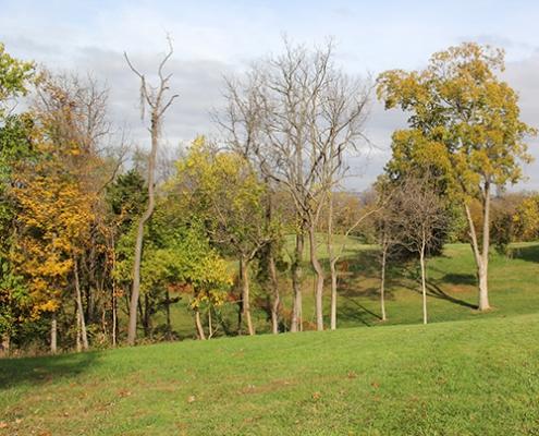 Johnson Hills Park in autumn